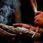 Bruler de la sauge pour cérémonie de purification par la fumée.